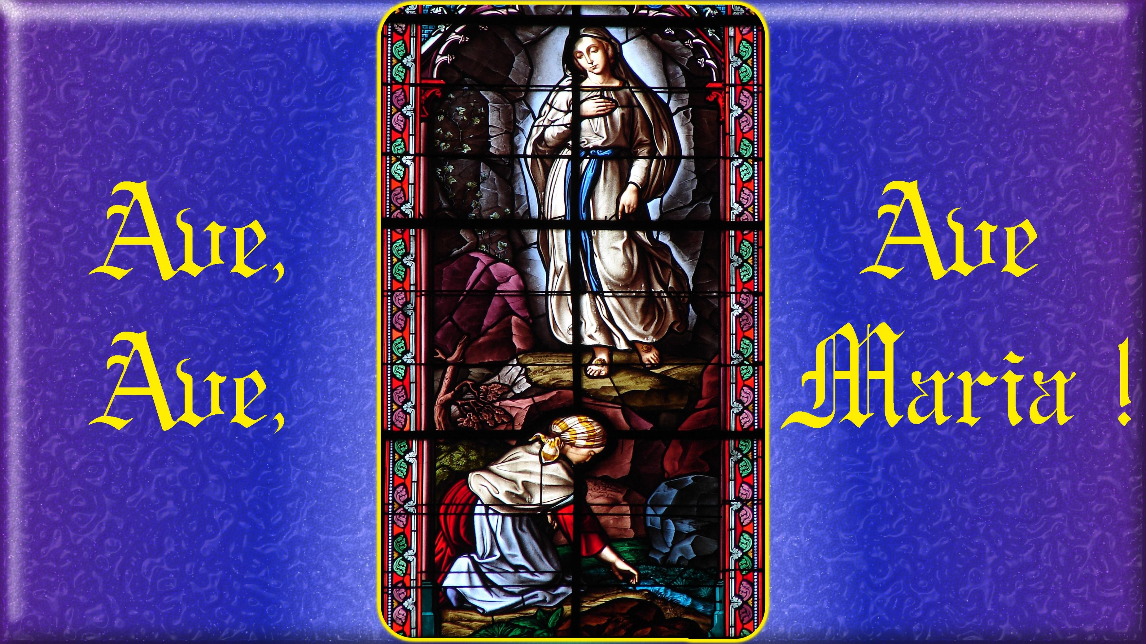 LOURDES HISTORIQUE Lourdes-_-9e-appa...aculeuse-570faba